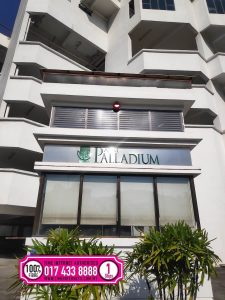 Palm Palladium wifi broadband