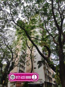 Taman Bukit Jambul wifi internet